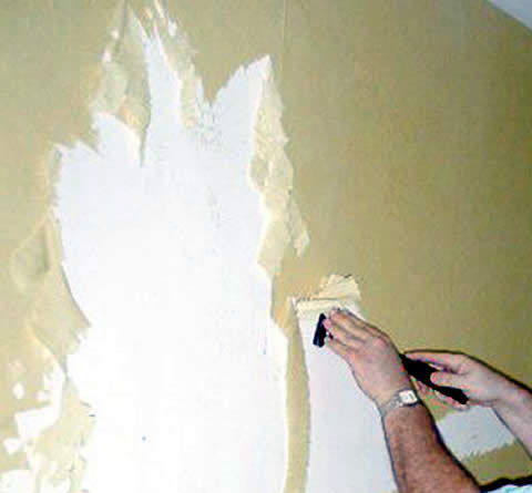 Wallpaper Removal, Installation and Hanging Services Madison Wisconsin